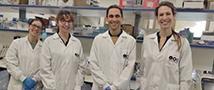 Прорыв в онкологии: уникальность клеток как их слабость