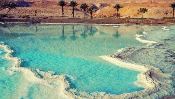 ТАУ вместе с региональным советом Тамар, научным центром Мертвого моря, фондами Портера и ICA и министерством регионального сотрудничества основал на Мертвом море Институт исследования жизни в экстремальных условиях