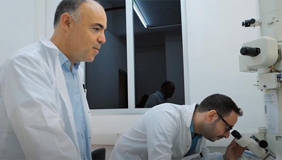 ТАУ разработал систему модификации генома, разрущающую раковые клетки
